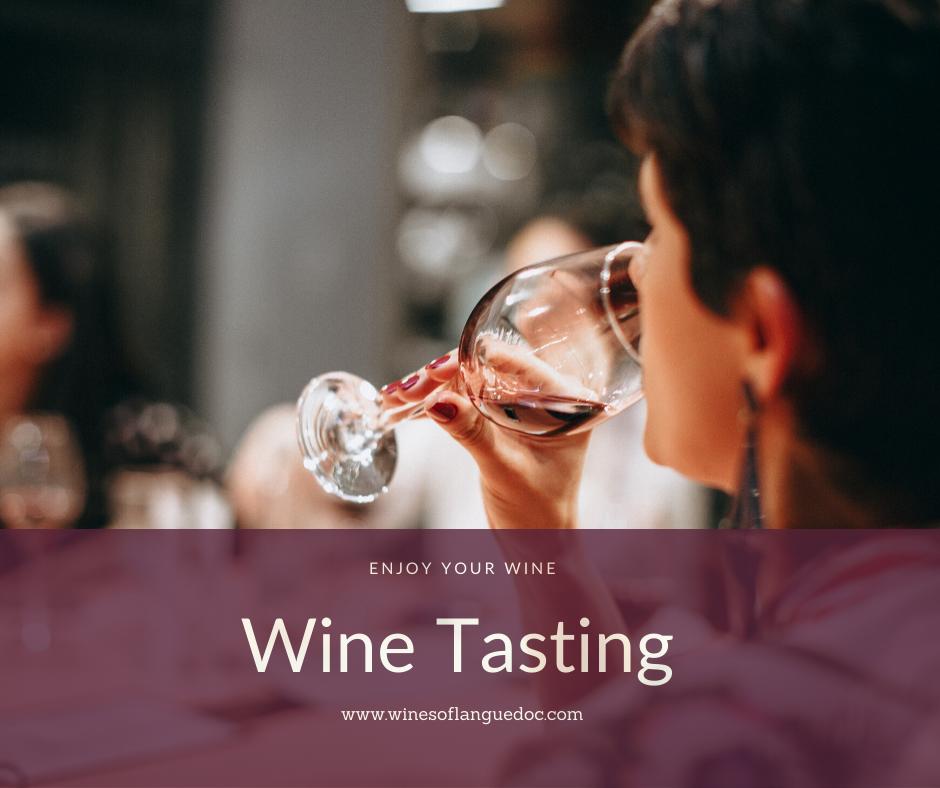 wines of languedoc_wine tasting