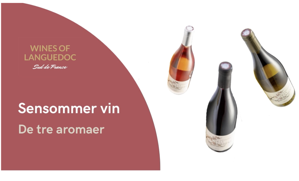 Sensommer vin- wines of languedoc